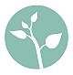 Fundacja Numen | Holistyczny rozwoj